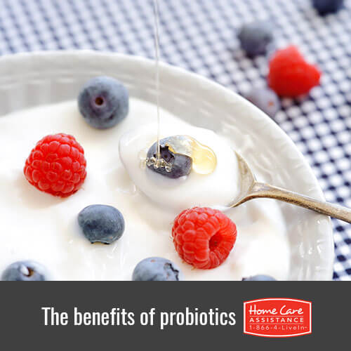 How to Add Probiotics to Your Diet