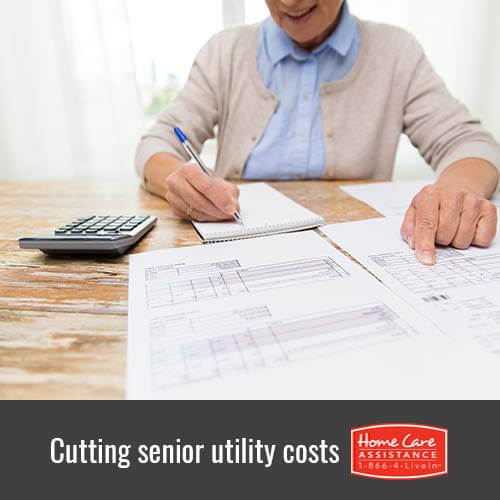 4 Tips for Cutting Senior Utility Costs in Mississauga, CAN