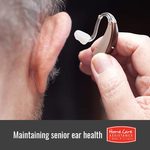 How to Care for Your Elderly Loved One's Ears in Mississauga, CAN
