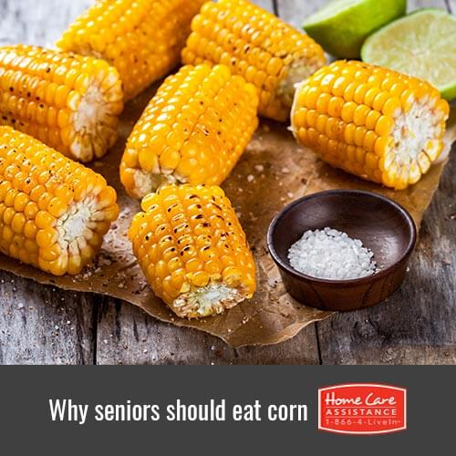 Why Your Senior Loved One Should Eat More Corn in Mississauga, CAN
