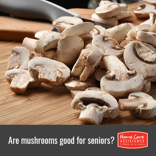 Why Are Mushrooms Beneficial for Seniors in Mississauga, CAN?