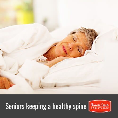 How Seniors Can Still Have a Healthy Spine in Mississauga, ON, Canada