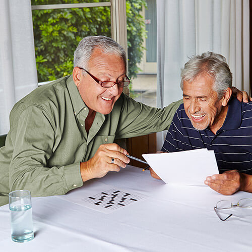 Reduction of Aphasia Risk in Seniors in Mississauga, ON
