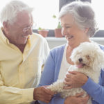 Healing Benefits of Owning a Pet in the Senior Years