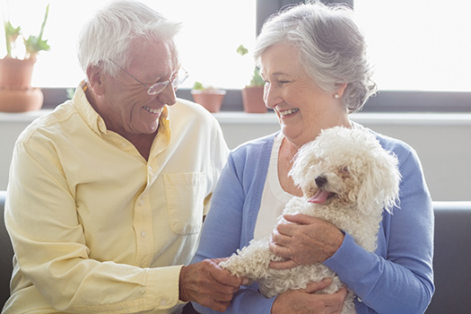 The Benefits of Having a Pet in the Senior Years in Mississauga, ON